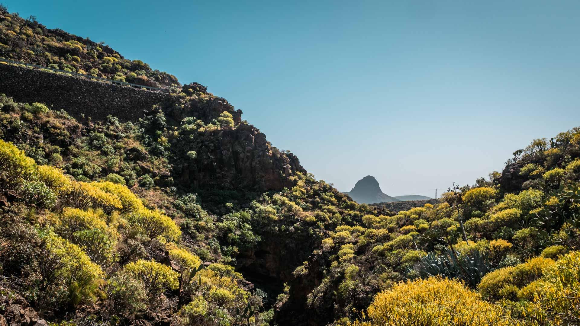Barranco_de_las_Vacas_Gran_Canaria